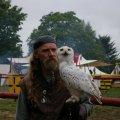Bild 2010_08_14_burgfest_stargard-sa-233-jpg