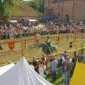 image 2011_08_13-burgfest-stargard_sa-127-jpg