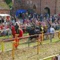 image 2011_08_13-burgfest-stargard_sa-132-jpg