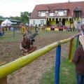 image 2011_08_13-burgfest-stargard_sa-174-jpg