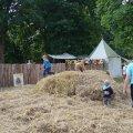 Bild 2012_08_burgfest_stargard-impressionen-030-jpg