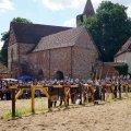 Bild 2012_08_burgfest_stargard-rabenbanner-019-jpg
