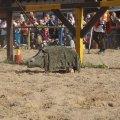 Bild 2012_08_burgfest_stargard-turney-036-jpg