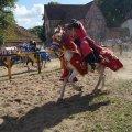 20. Stargarder Burgfest 2012