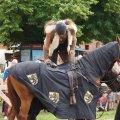 Bild 2014_08_10-burgfest-163-turney-jpg