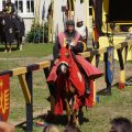 image 2015_08_09-burgfest-stargard-144-turnier-jpg