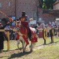 image 2015_08_09-burgfest-stargard-181-turnier-jpg