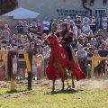 image 2015_08_09-burgfest-stargard-185-turnier-jpg