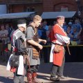 Bild 2015_08_09-burgfest-stargard-209-lehnseid-jpg